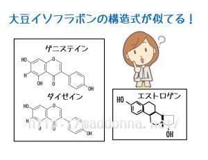大豆イソフラボンとエストロゲン