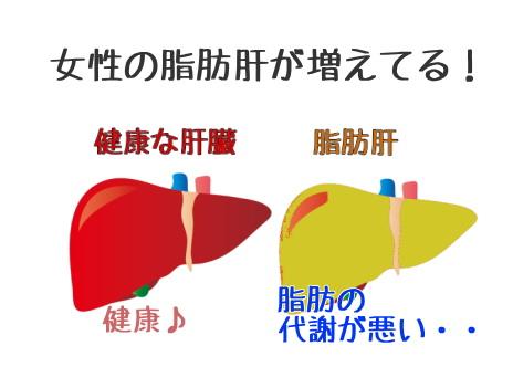 脂肪肝と健康な肝臓