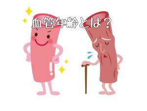 血管 年齢