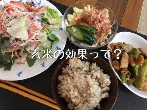 玄米 和食 ご飯