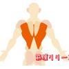 筋膜リリースにダイエット効果はある?その真偽とダイエット効果を高めるストレッチ集