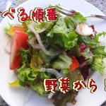 食事制限中のメニューで簡単ダイエット!太らない食べ方や食事方法!