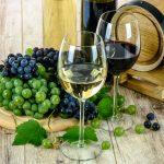 ワインのポリフェノール効果効能を徹底解説!赤ワイン白ワインどっち飲む?