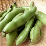 ムクナ豆の効果や副作用について!脚むずむず症候群の改善や疲労回復にも!